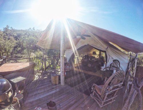 Camp Ribbonwood Safari Tent